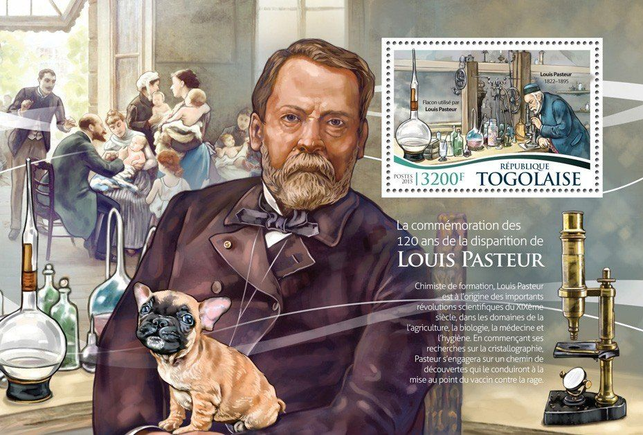 the works of louis pasteur Louis pasteur is one of the secular saints of france, as well as a hero of medicine and science of mythic stature books, plays, and poems have been written about him, and yet it is only recently that a critical historical appraisal of pasteur and his work.